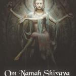 Nina Shiva Flyer_Page_2